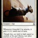 MTG Graceful Cat (Amonkhet) near mint card Common