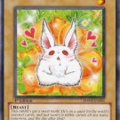 x3 Yugioh Bunilla (PHSW-EN001) 1st Edition near mint card Common FREE SHIPPING