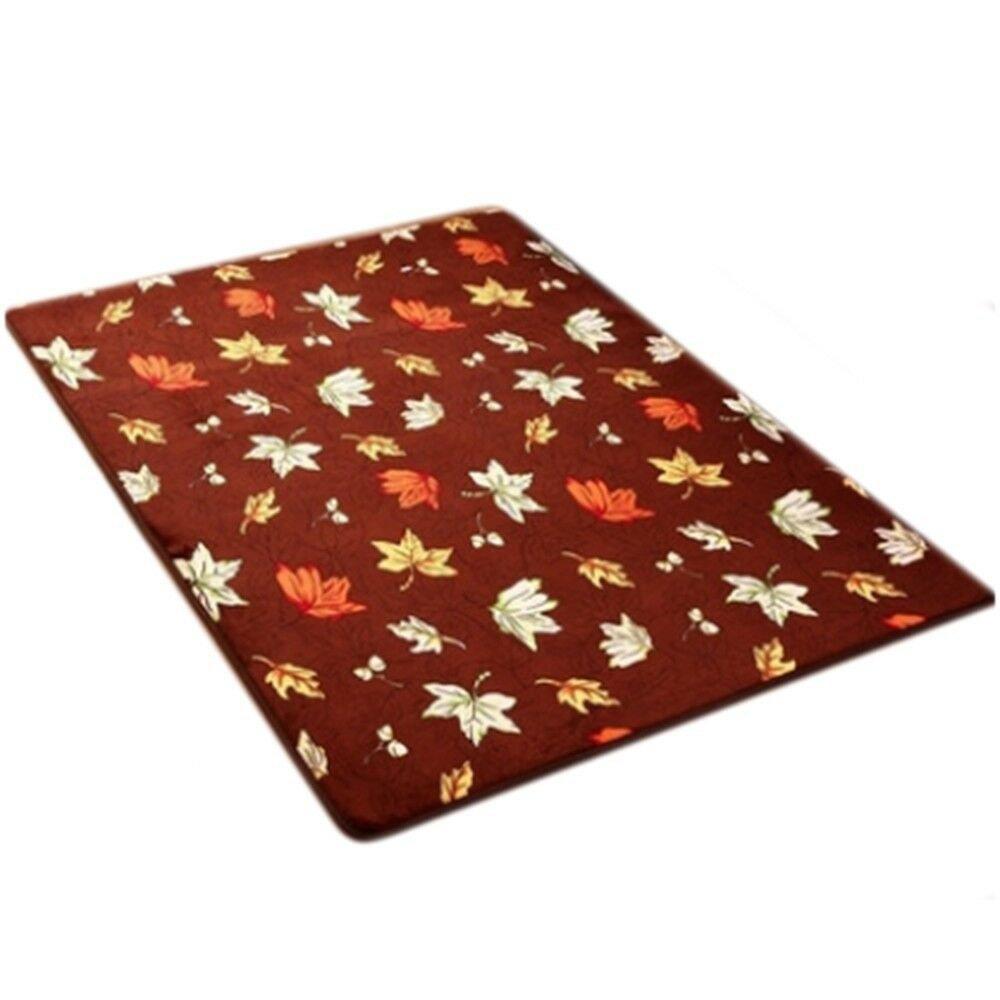 Carpet Coral Fleece Non-slip Door Mat   02  40*60cm