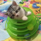 Funny Pet Kitty Cat puppy dog Toy Trilaminar Petstages Tower of Tracks Ball Disk