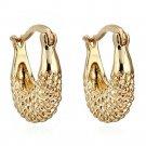 Moon 18K Gold Galvanized Zircon Earrings