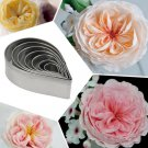 Cake Mold Cutter Set Rose Flower