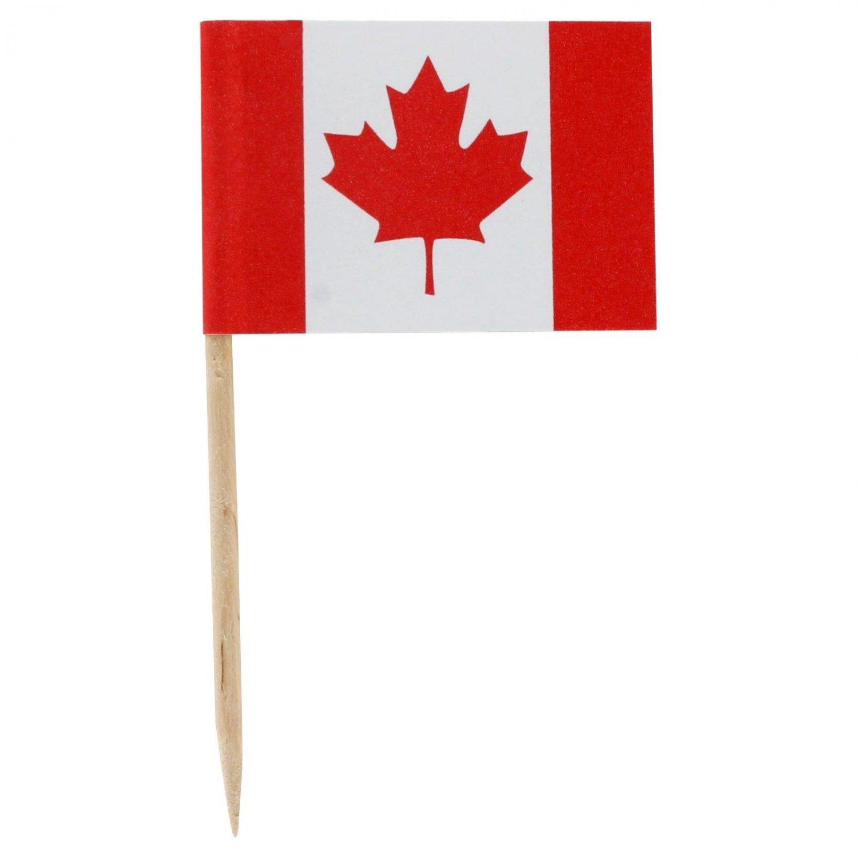 "100 Ct Box 2.5"" Canadian Canada Flag Mini Toothpicks Picks"