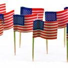 144 American Flag Mini Picks Toothpicks