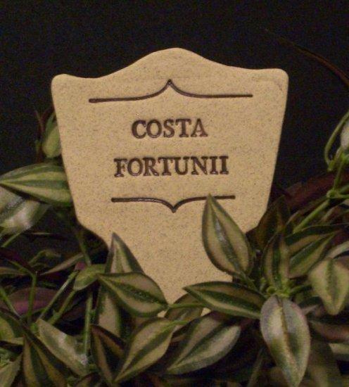 'COSTA FORTUNII' Humor in the Garden MARKER Decor
