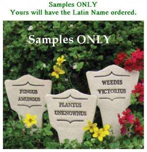 'GARDENITIS UNCONTROLLUS' Humorous Garden MARKER Decor