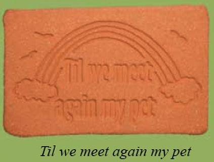 'TIL WE MEET AGAIN MY PET' Everlasting PET MEMORIAL