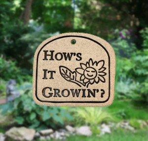 ' HOW'S IT GROWIN'? ' Weatherproof PLAQUE with Hanger