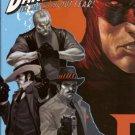 Daredevil, Vol. 2 #102