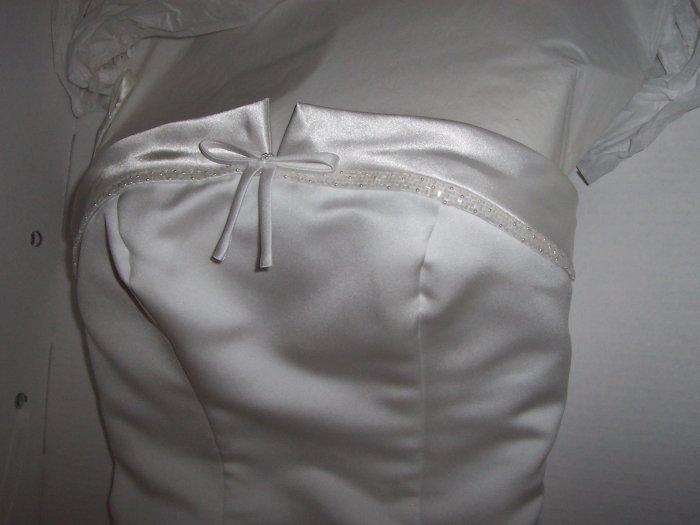 Michaelangelo PE8120 Wedding Dress