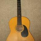 Hohner Contessa International 6 String Acoustic Guitar Model HGK 294