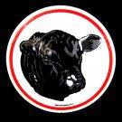 "Black Angus Cow Milk Farm Barn Star 16"" Hex Sign German Amish Folk Art"