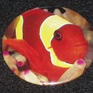 Clown fish on photo badge, pin - F 0001