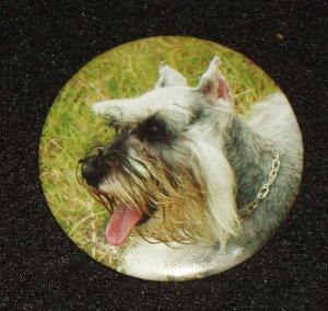 Schnauzer dog on badge, pin back - D 0003