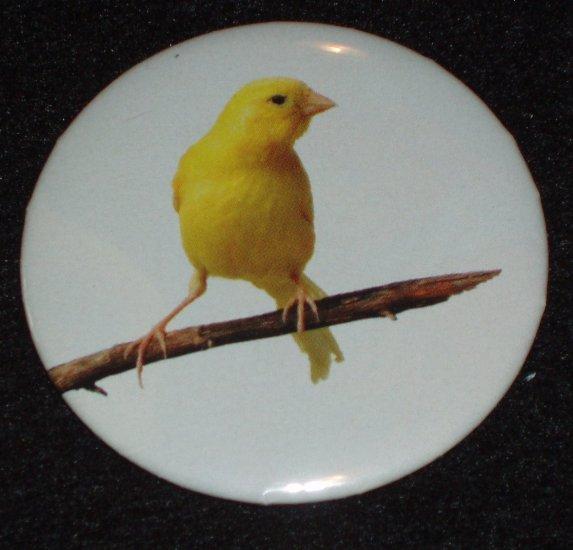 Yellow Canary bird on a badge pin  B 0001