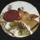 Yellow dog catching a frisbee photo on a badge, pin D 0009