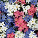 USA SELLER Mixed Forget Me Not (Blue, White, Pink) 100 seeds