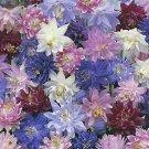 USA SELLER Aquilegia (Columbine) vulgaris plena 10 seeds
