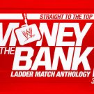 WWE: Straight to the Top - Money in the Bank Ladder Match Anthology DVD, 2013