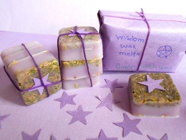 Wisdom Spell Wax melts, herb wax melts, witchcraft supplies