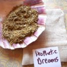 Prophetic dreams, dream pillow, dream herb pouch, witchcraft supplies