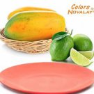 DINNERWARE 4 Ceramic dinner plates MIXED matte COLORS Kitchen plates