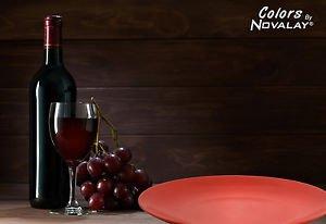 DINNERWARE FOUR Ceramic Dinner plates set of 4 red matte kitchen plates
