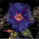 SILENT DRIVE Love Is Worth It 2004 US 11 Track CD Album