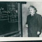 Albert Einstein - 8x10 photo