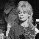 Brigitte Bardot, French actress. - 8x10 photo