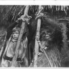 Mark Hamill and Chewbacca trapped. - 8x10 photo