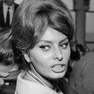 Sophia Loren looking back. - 8x10 photo