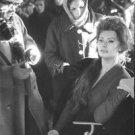 Sophia Loren sitting. - 8x10 photo