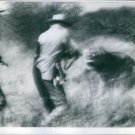 Two man hunting and attack by a lion. - 8x10 photo