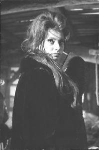 Sophia Loren posing. - 8x10 photo