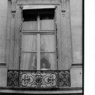 Maria Callas at window. - 8x10 photo