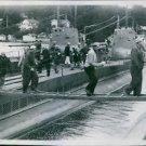 1939The Polish navy sailors disembark submarines Zbik and Rys in Vaxholm, Swede