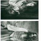 Madeleine Stowe - 8x10 photo