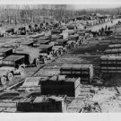 World War II. U.S. Army operates busy motor assembly depot in France. - 8x10 pho