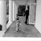 John F. Kennedy with child.  - 8x10 photo