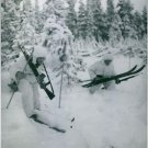 Soldiers skiing on snow, during the winter war, in Finland, 1940. - 8x10 photo