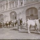 Man and horses from Asia Minor , in front of the station in Haidar - pacha durin