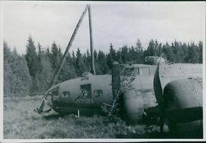 View of a crashed airplane in the field during Sweden War II, 1943. - 8x10 photo