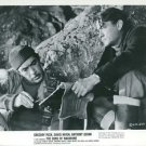 Gregory Peck and Anthony Quinn - 8x10 photo