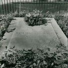 Graveyard - Karl Hjalmar Branting - 8x10 photo