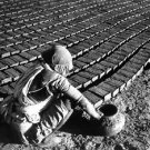 Woman working in a brick factory in India. - 8x10 photo