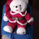"""2000 Walmart DAN DEE Christmas Snowflake Teddy Bear Boy 20"""" ADULT OWNED CLEAN"""