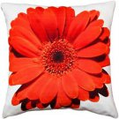 Pillow Decor - Bold Daisy Flower Red Throw Pillow 20X20  - SKU: PD2-0064-03-20