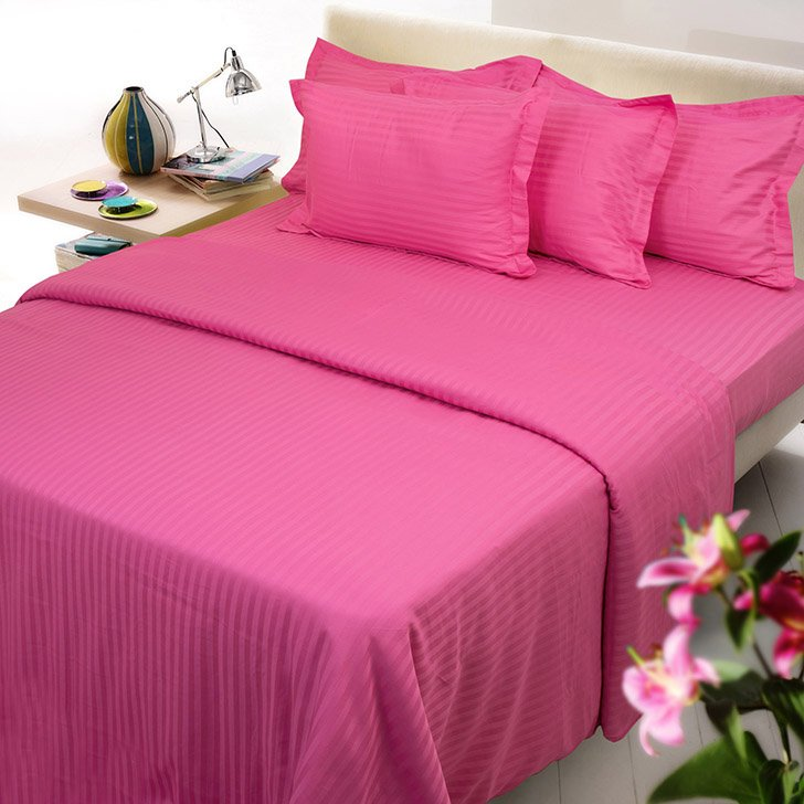 Hot Pink Striped Queen Size Sheet Set 1000 Thread Count Egyptian Cotton