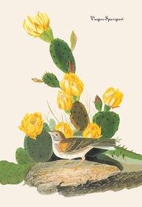 Vesper Sparrow - 16x24 Giclee Fine Art Print Framed In Gold (20x30 Finished)